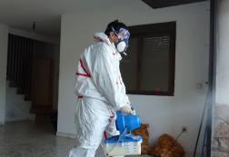 Eliminar insectos con desinfección Madrid